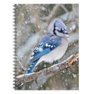 Caderno Espiral Jay azul em uma tempestade de neve