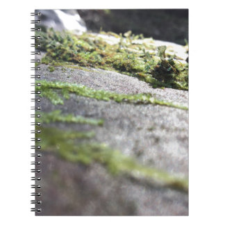 Caderno Espiral Líquene de Boulder