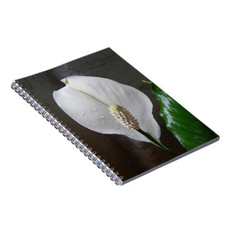 Caderno Espiral Livro de nota da flor