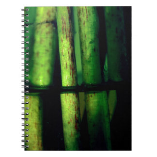 Caderno Espiral Macro verde