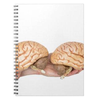 Caderno Espiral Mãos que guardaram o cérebro humano modelo no