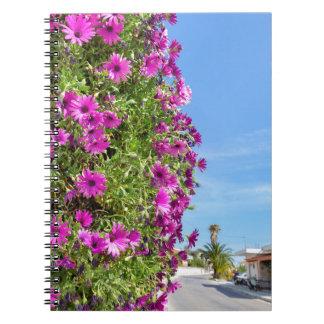 Caderno Espiral Margaridas espanholas cor-de-rosa de suspensão na
