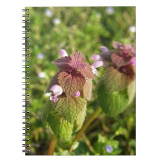 Caderno Espiral Morto-provocação roxa (purpureum do Lamium) no