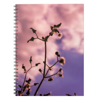 Caderno Espiral Nature Colors