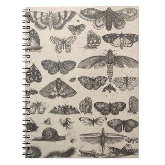 Caderno Espiral Notas do campo dos Lepidoptera da entomologia dos