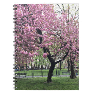 Caderno Espiral Nova Iorque cor-de-rosa bonito da árvore NYC da