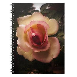 Caderno Espiral O verão gravado aumentou
