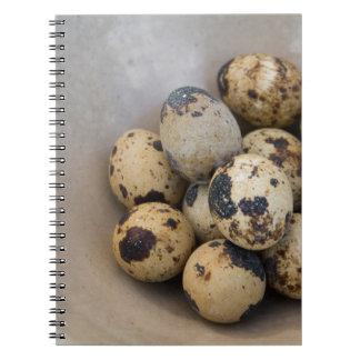 Caderno Espiral Ovos de codorniz