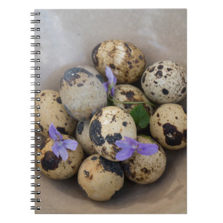 Caderno Espiral Ovos de codorniz & flores 7533