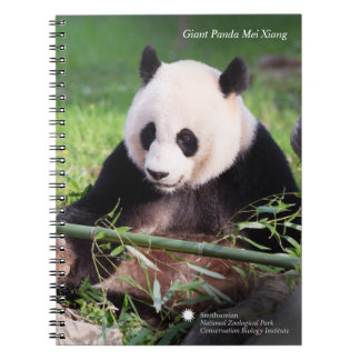 Caderno Espiral Panda gigante Mei Xiang