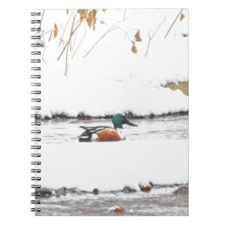 Caderno Espiral Pato do inverno