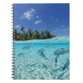 Caderno Espiral Peixes no mar