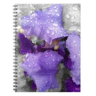 Caderno Espiral pingos de chuva na íris