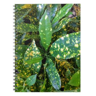 Caderno Espiral Planta do Croton