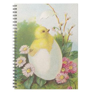 Caderno Espiral Portal do bebê do pintinho da galinha da