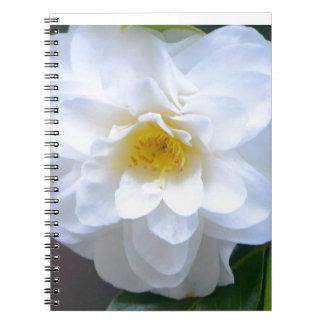 Caderno Espiral Puro