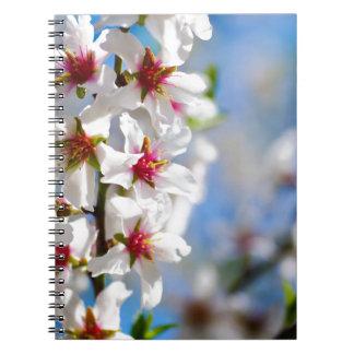 Caderno Espiral Ramo de árvore de florescência com flores brancas