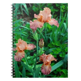 Caderno Espiral Rapsódia da tangerina