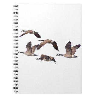 Caderno Espiral Rebanho de gansos selvagens