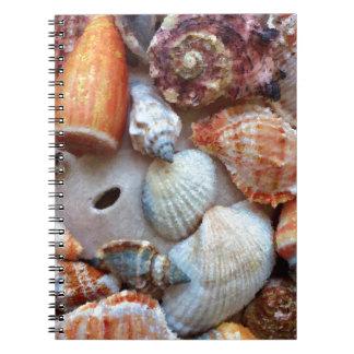 Caderno Espiral Seashells pelo litoral