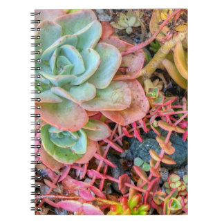 Caderno Espiral Succulents