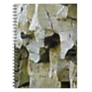 Caderno Espiral teto branco áspero da rocha