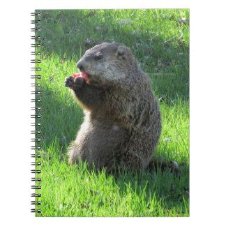 Caderno Espiral Tomate Groundhog