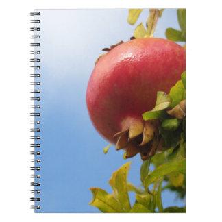 Caderno Espiral Única fruta vermelha da romã na árvore nas folhas