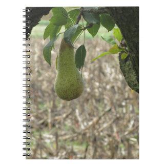 Caderno Espiral Única pera verde que pendura na árvore