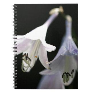 Caderno Espiral vivian-chu