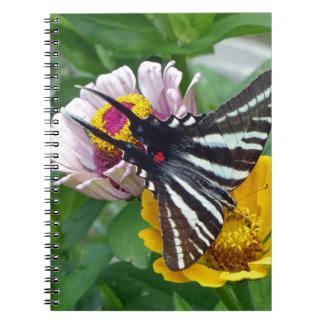 Caderno Espiral Zebra Swallowtail+Besouro japonês