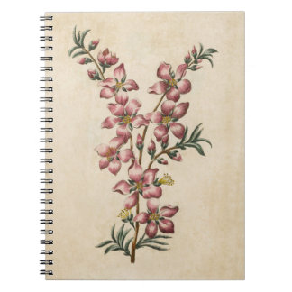 Caderno Flor floral da amêndoa de Botaical do vintage