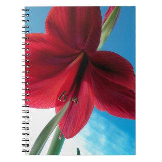 Caderno flor vermelha vívida do Amaryllis 108a