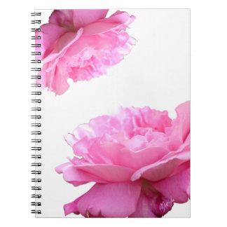 Caderno floral de florescência dos rosas do rosa