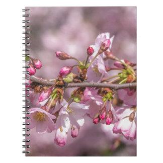 Caderno Flores de cerejeira