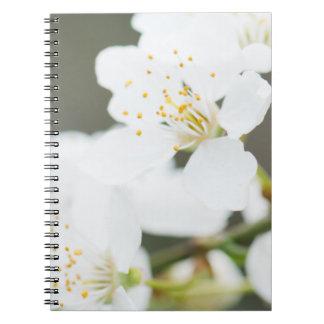 Caderno Florescência da primavera