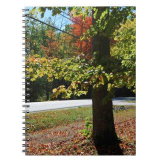Caderno Folhas de outono em Maine