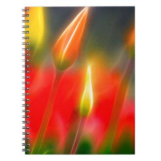 Caderno Fulgor vermelho e amarelo da tulipa