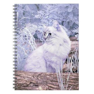 Caderno Gato do gatinho da fantasia