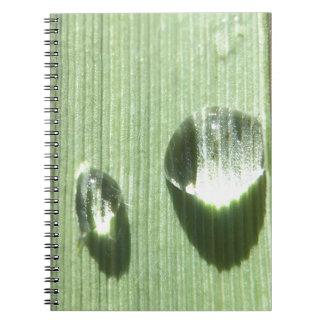 Caderno Gotas de orvalho