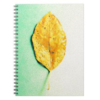 Caderno Hortelã dourada por JP Choate