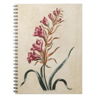 Caderno Ilustração floral botânica do Foxglove do vintage