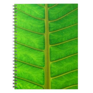 Caderno Impressão da palmeira