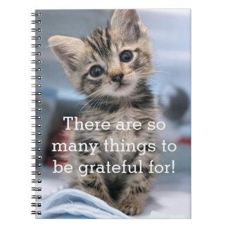 Caderno Jornal grato do gatinho