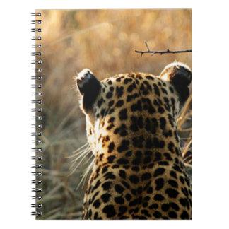 Caderno Leopardo que olha fora na distância