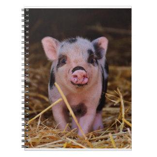 Caderno mini porco