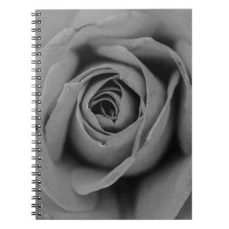 Caderno monocromático do rosa