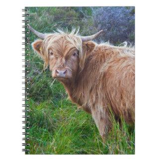 Caderno novo da vaca das montanhas