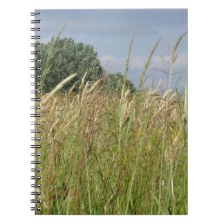 Caderno Paisagem do verão do campo selvagem no campo