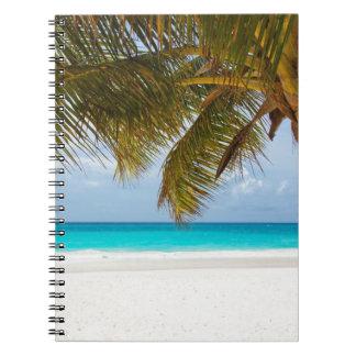 Caderno Palmeira verde na praia durante o dia